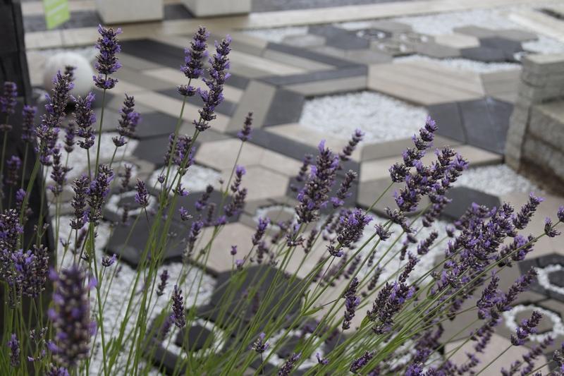 kostki ekologiczne w ogrodzie